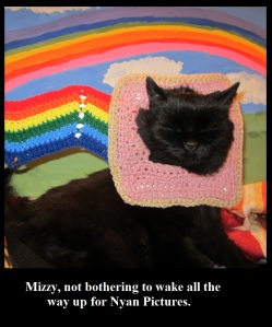 Nyan Cat Pet Costume Crochet Pattern