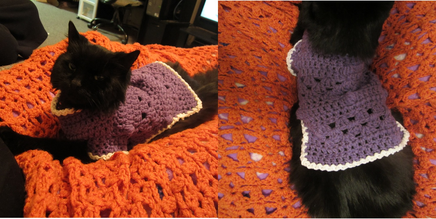 Kitty Or Small Doggie Sweater Craftyghoul