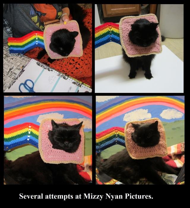 Free Nyan Cat Costume Crochet Pattern craftyghoul