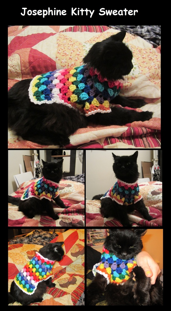 Josephine Kitty Sweater Collage