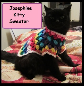 Josephine Kitty Sweater Front 1