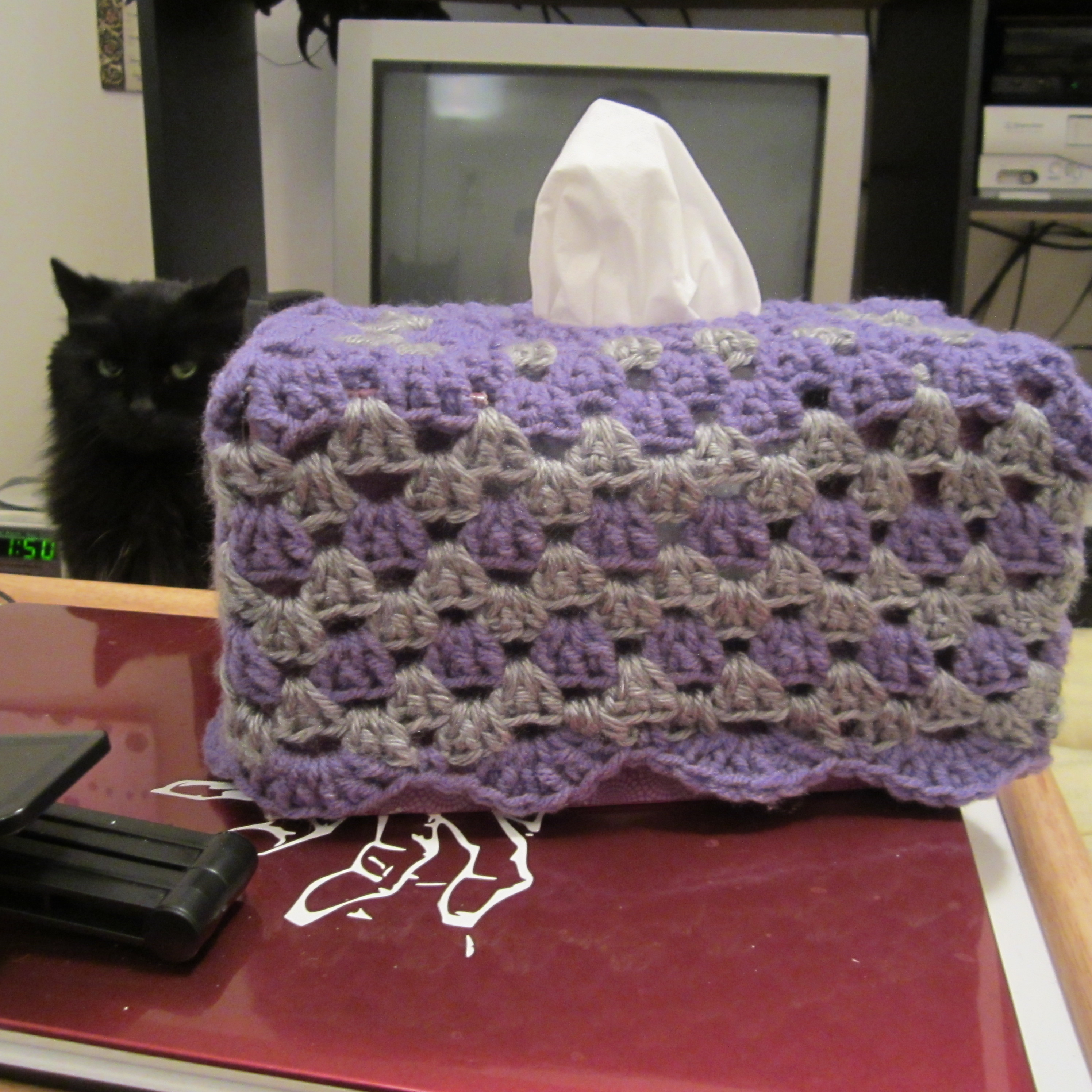Tissue Box And Ice Pack Cozy Free Crochet Pattern Craftyghoul