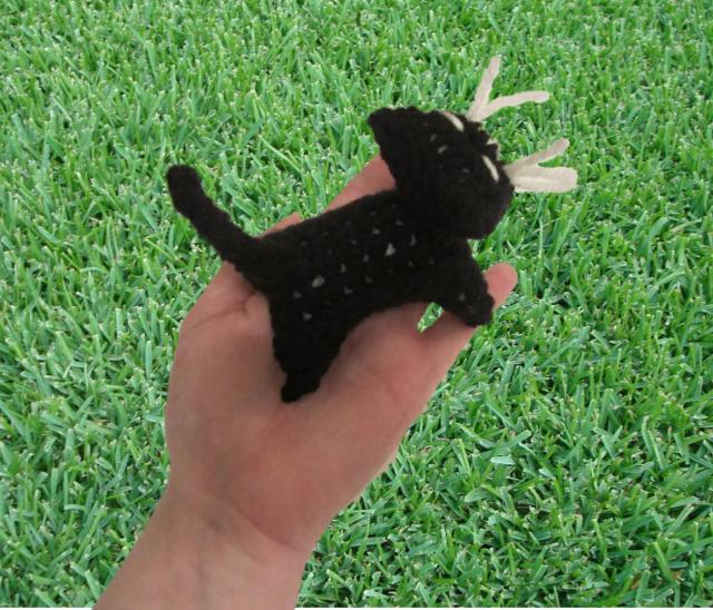 pocket kitty grass 2